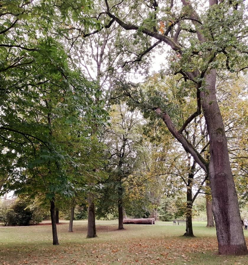 September im Park