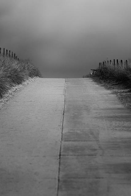 Bild von Foto-Rabe auf Pixabay