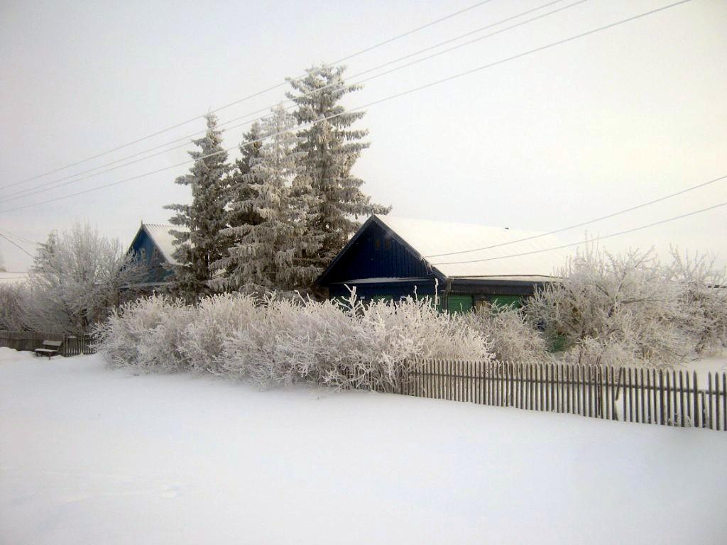 Schönfeld im Winter