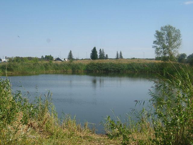 Der Baggersee (Dobroje Pole / Schönfeld)